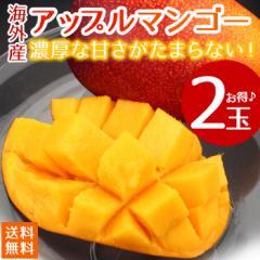 【送料無料】【海外産】 アップルマンゴー 2玉(gn)
