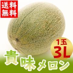 メロン 大玉 貴味メロン 1玉 3Lサイズ 青肉 フルーツ 旬 初夏の果物 国産 たかみメロン(gn)