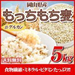 29年産 岡山県産大麦100%もっちもち麦5kg  送料無料 北海道・沖縄は700円の送料がかかります。