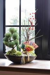 おめでたい年末年始ギフト 松竹梅盆栽セット 【門松盆栽】 信楽焼き入り