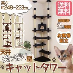 キャットタワー 突っ張り 多頭飼い スリム 猫用品 ペット用品 猫 ZJS-09016-1 プラザセレクト 送料無料