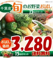 千葉県産 旬の採りたて新鮮野菜セット 15品目 お任せ 3280円「同梱配送不可】送料無料