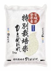 日本全国【送料無料】28年産 宮城県登米産 ひと...
