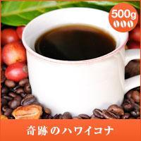 【澤井珈琲】奇跡のハワイコナ  エクストラファンシー 500g袋 (コーヒー/コーヒー豆/珈琲豆)