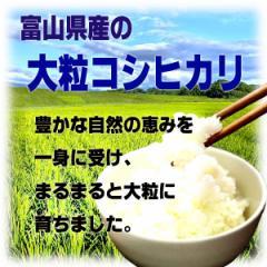 平成28年産 新米コシヒカリ無洗米10kg