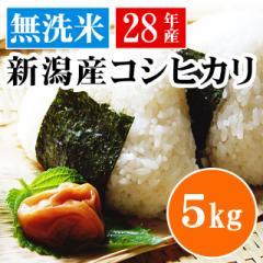 【送料無料】無洗米・新潟県産コシヒカリ(吟精)5kg<白米 5kg×1 お米 28年 新米>