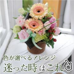 アレンジメントギフト フォーチュンカラー 5色から選べるアレンジメント 誕生日花贈る ホワイトデー花 花宅配エーデルワイス