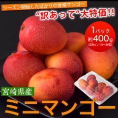 宮崎県産『ミニマンゴー』 約400g 目安として3〜20玉 ※常温○