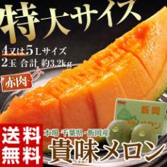 《送料無料》 千葉県・飯岡産 「貴味メロン(赤肉...