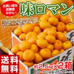 《送料無料》長崎県産みかん 糖度12度以上選果『味ロマン』 約2.5kg (2S〜M) ×2箱 ※常温 ☆