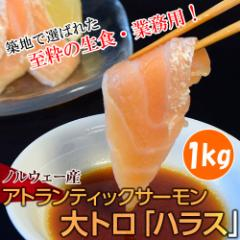 生食・業務用!ノルウェー産 アトランティックサーモン 大トロハラス 1kg ※冷凍 ☆