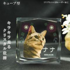 かわいいクリスタルペット位牌【ピュアラブ キュ...