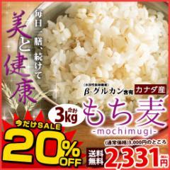 【SALE】【新発売】もち麦 3kg (500g×6) カナダ産 館のもち麦ダイエット βグルカン 大麦 送料無料 ごはん