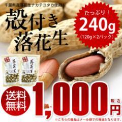 【ALL¥1000】【送料無料】千葉県産ナカテユタカ...