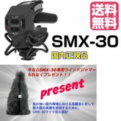 AZDEN アツデン ガンマイク SMX-30 モノラルス...