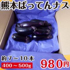 ばってんナス 熊本県産 400〜500g 約7〜10本 なす ブランド茄子