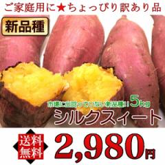 【送料無料】【ご家庭用訳あり】話題の新品種「シルクスイート(サツマイモ)」約5kg《※同梱不可》《※指定日不可》【stp】