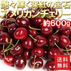 送料無料 さくらんぼ カリフォルニア産 アメリカンチェリー 300g×2パック チェリー フルーツ 旬 果物 (gc)