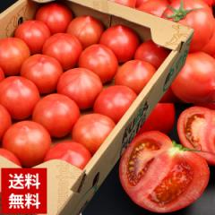 【送料無料】【トマト】桃太郎トマト 1ケース 約4kg【とまと】(gc)