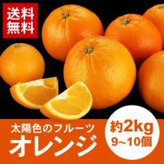送料無料 果汁たっぷりオレンジ 約2kg おれんじ(gn)