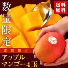 【送料無料】【マンゴー】ペルー産 アップルマンゴー 4玉