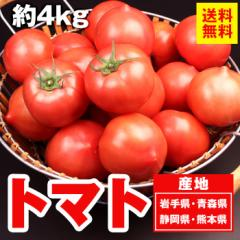 送料無料 野菜 とまと 真っ赤なトマト4kg リコピン(gc)