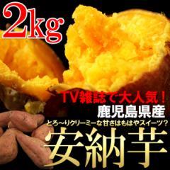 送料無料 野菜 さつまいも 鹿児島県産 安納芋 約2kg 秋の味覚(gn)※10月中旬出荷予定