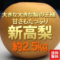 送料無料 フルーツ 梨 新高梨 約2.5kg 4〜5玉 なし ナシ (gn)