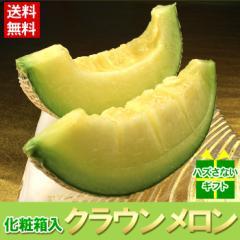 送料無料 メロン 静岡県産 クラウンメロン 1玉 食べ頃保証付き ギフト プレゼント フルーツ 旬(gn)