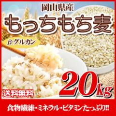 29年岡山県産大麦100%もっちもち麦20kg【5Kg×4袋】  送料無料 北海道・沖縄は700円の送料がかかります。
