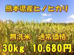 【無洗米】新米28年産九州熊本県産無洗米ヒノヒカリ30kg/5kg×6個/ひのひかり/白米