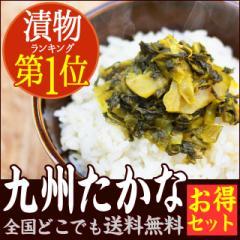 【送料無料】九州高菜!たっぷり220g×2袋!ポイント消化!乳酸発酵!送料無料!/漬物・つけもの【mlb】