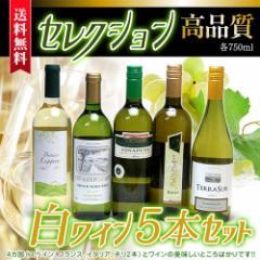 セレクション 白ワイン 5本セット ( スペインワイン 1本 フランスワイン 1本 イタリアワイン 1本 チリワイン 2本)計750ml×5本