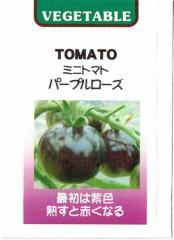 藤田種子 ミニトマト パープルローズ 約20粒