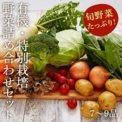 送料無料 有機野菜 有機 野菜 野菜セット 野菜詰め合わせ 有機・特別栽培のお野菜詰め合わせセット(79品)