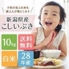 【送料無料】子供に大人気!新潟県産こしいぶき 10kg<送料無料 白米 5kg×2 お米 28年>