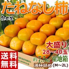 《送料無料》和歌山県産 たねなし柿(刃根又は平核無柿) 28〜40玉 M〜2Lサイズ 計約7.5kg ※常温 ○
