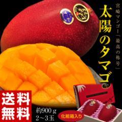 《送料無料》宮崎産 完熟マンゴー「太陽のタマゴ」 2〜3玉 約900g 化粧箱入り ○