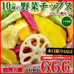 【SALE】送料無料 10種の野菜チップス 110g×2 野菜チップス 野菜スナック 乾燥野菜 メール便 ベジタブル お菓子