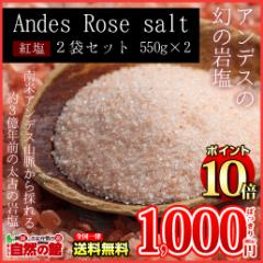 【ポイント10%】【100品SALE】岩塩 食用 ボリビア岩塩♪送料無料 紅塩(ピンクソルト) 550g×2個セット アンデス岩塩  食用