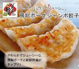 【全国送料無料】房総ジャンボ餃子(20個入)セット