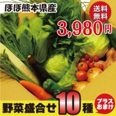 新鮮野菜詰め合わせ 10品+おまけつき 送料無料