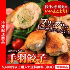 手羽餃子10個入り【グルメ】【餃子】【鶏肉】【5400円以上まとめ買いで送料無料対象商品】(lf)あす着