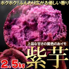 【さつまいも】「紫芋」約2.5kg(gn)