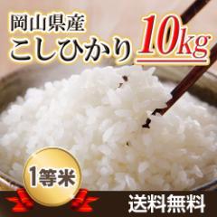 29年産新米 岡山県産こしひかり10kg 【5kg×2袋】  送料無料 北海道・沖縄は700円の送料がかかります。