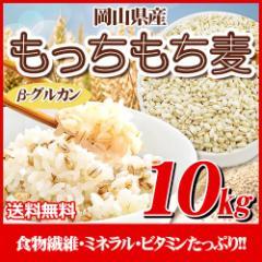 29年岡山県産大麦100%もっちもち麦10kg【5kg×2袋】  送料無料 北海道・沖縄は700円の送料がかかります。