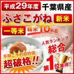 【送料無料】29年度千葉県産◆ふさこがね◆10kg 精米 新米 一等米  在庫限り<同梱不可><単独発送> 9月28日より出荷開始予定
