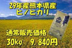 【当店一番人気】新米29年産九州熊本県産ヒノヒカリ30kg/10kg×3個/ひのひかり/精白米/くまもとのお米