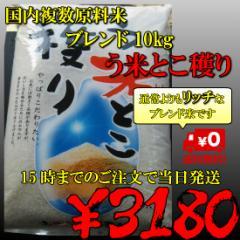 国内産複数原料米 ブレンド う米とこ穫り10kg