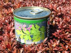 トキタ種苗 サバイパクチー 2デシリットル缶 【宅配便対応】